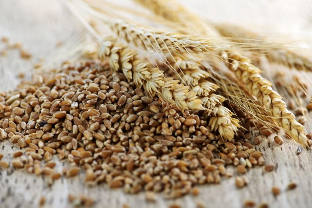 Whole-Grain-Wheat-germ-Clos-7343775